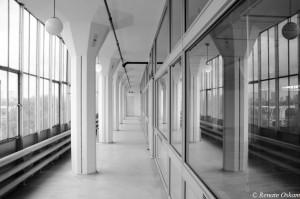architectuur-van Nelle-Rotterdam