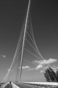 architectuurfotografie-calatravabrug