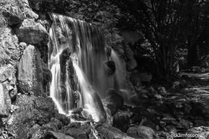 natuurfotografie arnhem waterval park sonsbeek