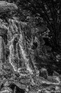 natuurfotografie arnhem waterval park sonsbeek 02