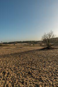 panoramavoorbeeld 03
