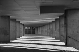 architectuur nationaal architectonisch instituut rotterdam