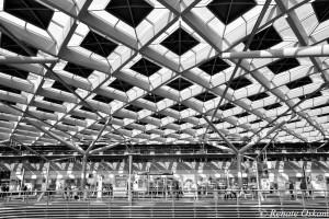 architectuur station denhaag.02