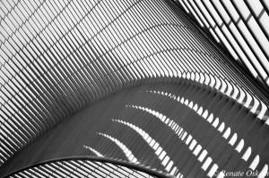 architectuur station luik.05