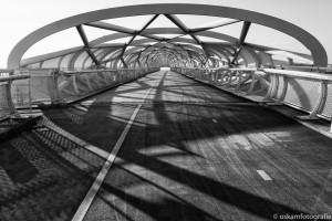 architectuurfotografie groene verbinding