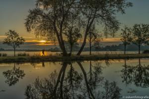 zonsopkomst elfhoevenplas 15