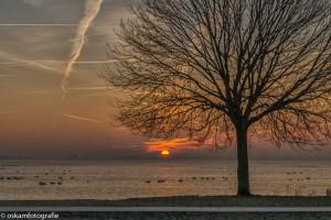 zonsopkomst surfplas 01